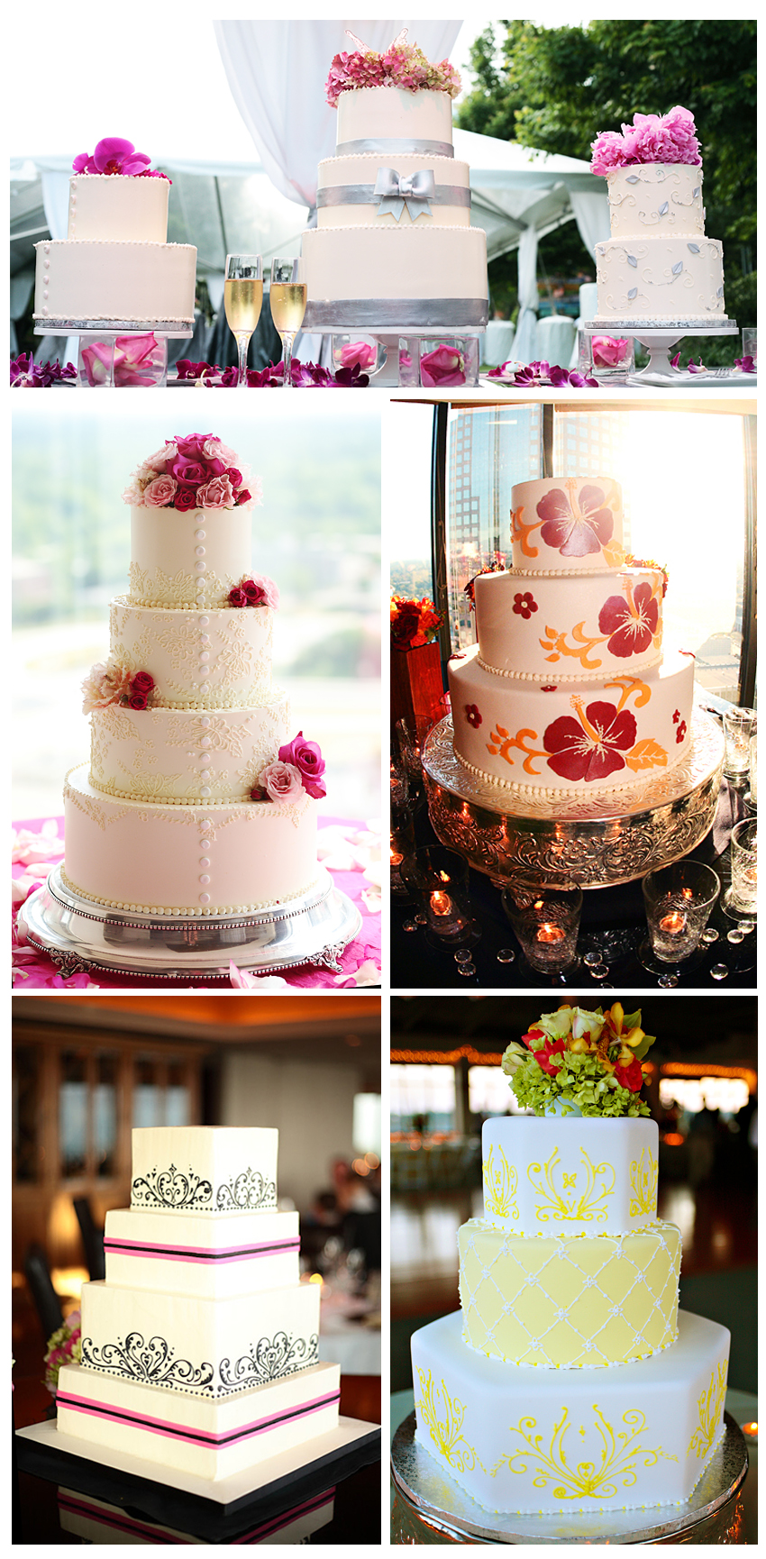 Cake Lady Jill - New